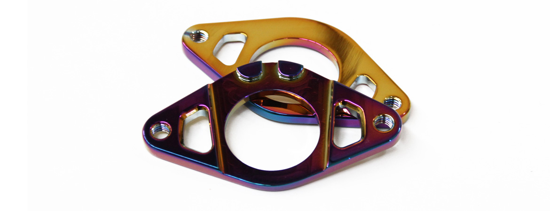 Colony Stem Gyro Plate Rainbow