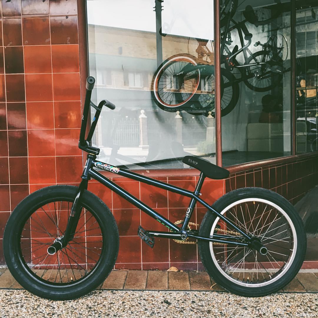 alex bike