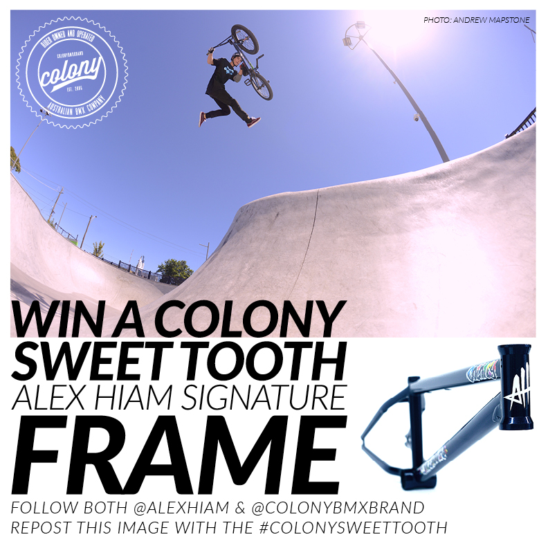 colony alex frame giveaway