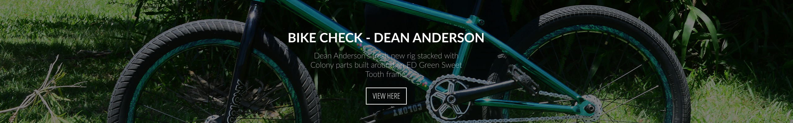 Bike Check - Dean Anderson