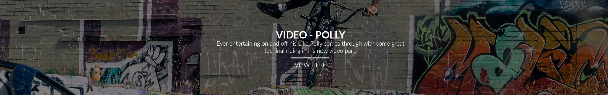 polly video