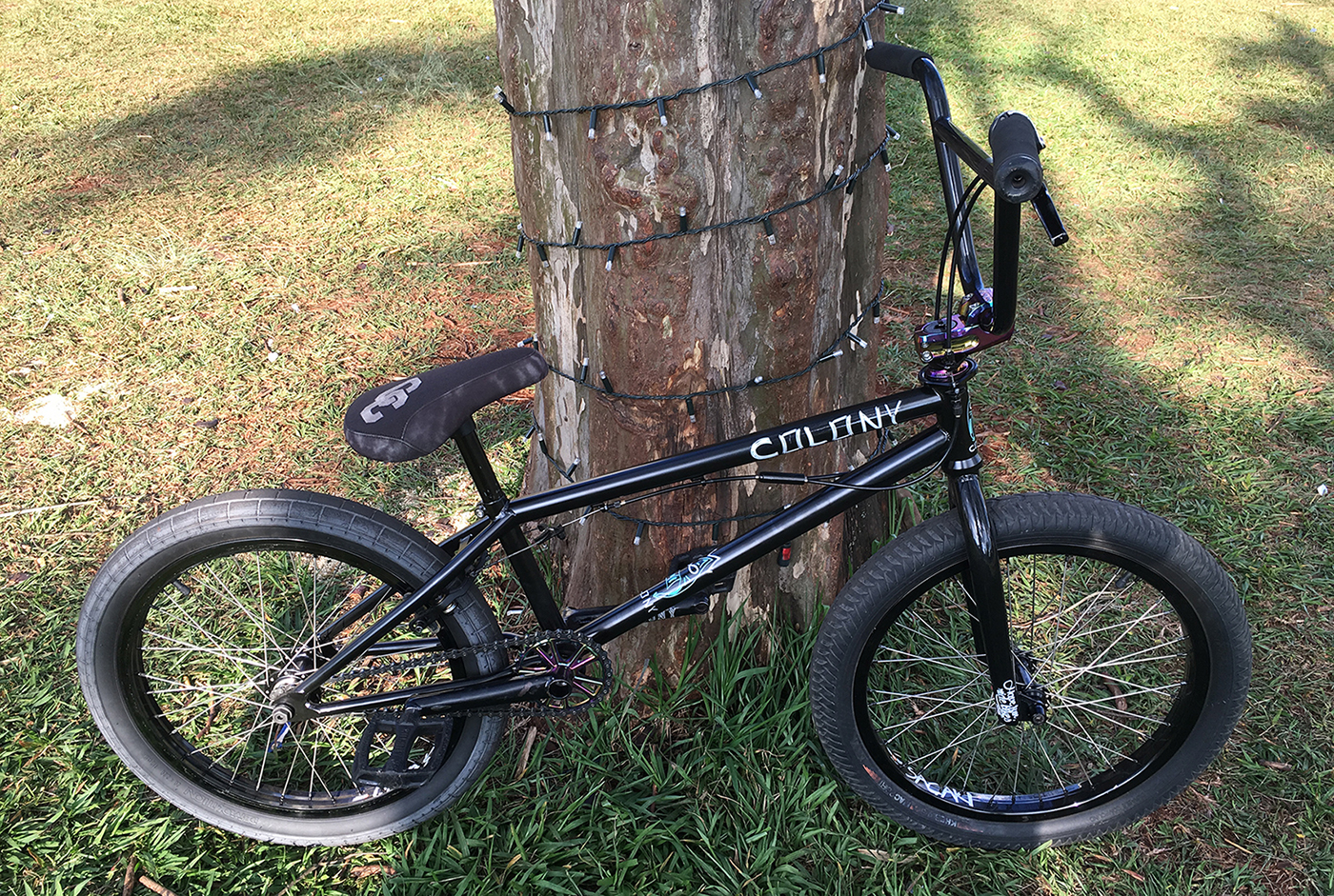 Paulo Sacaki Bike Check
